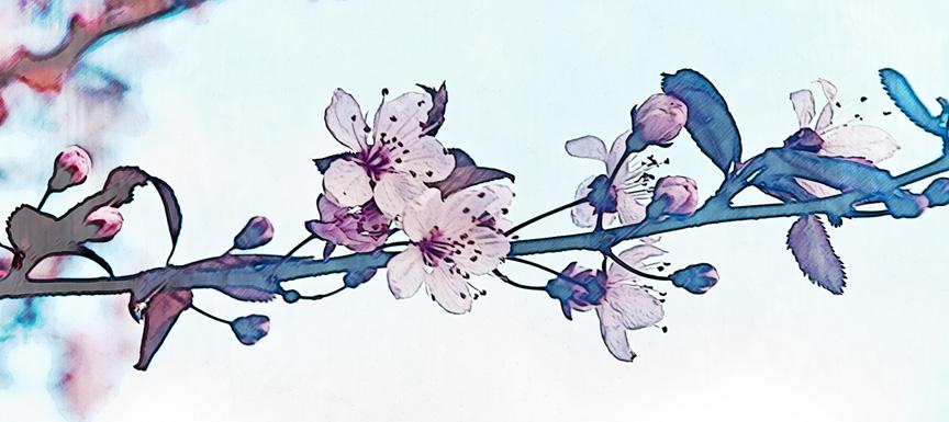 bisutería y complementos flor cerezo